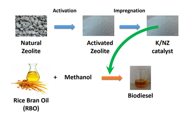 Biodiesel Production from Rice Bran Oil over Modified Natural Zeolite Catalyst